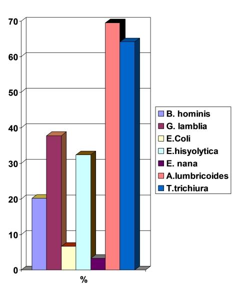 parasitosis_intestinal_preescolares/grafico_examen_heces