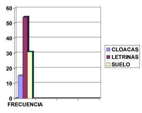 parasitosis_intestinal_preescolares/grafico_excretas
