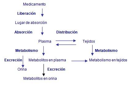 prescripcion_enfermeria_urgencias/farmacodinamica_medicamento_prescrit