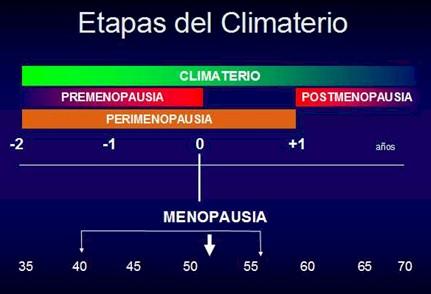 Medicina_Familia_menopausia/climaterio_etapas_fases