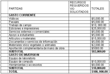 intervencion_didactica_dengue/desglose_financiero
