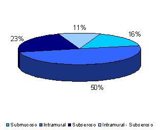 miomatosis_uterina_ginecologia/grafico_tipo_mioma