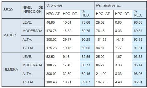 resistencia_antihelmintica_ivermectina/strongylus_nematodos_gastrointestinales