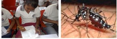 conocimientos_enfermedad_dengue/actividades_transmisor_dengue