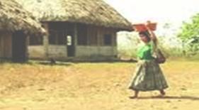 conocimientos_prevencion_dengue/comunidad_endemia_infeccion