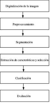 diagnostico_lesiones_mamografias/implementacion_sistema_ayuda