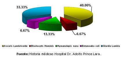 dengue_hemorragico_pediatria/grafico_coinfecciones_parasitarias_I