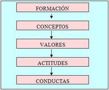 participacion_comites_salud/formacion_actitudes