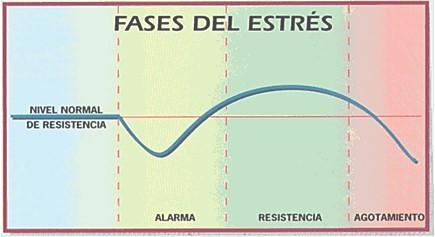 estres_cronico_ansiedad/fases_etapas_stress