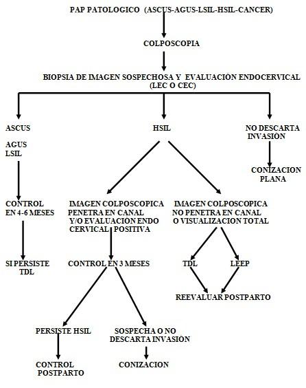 cancer_cuello_uterino/Papanicolau_PAP_HPV_cervical