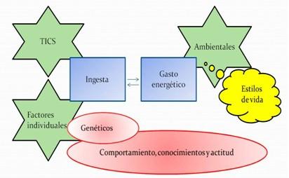 obesidad_infantil_alimentacion/ingesta_gasto_energetico