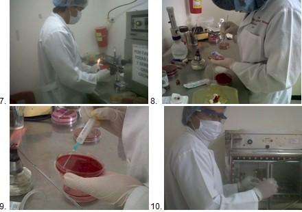 germenes_dialisis_peritoneal/manejo_proceso_hemocultivo