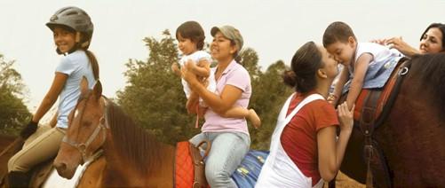 desarrollo_cognitivo_caballo/hipoterapia_neurodesarrollo