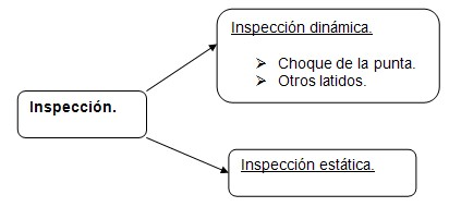 historia_clinica_cardiovascular/exploracion_inspeccion