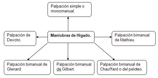 historia_clinica_digestivo/exploracion_palpacion
