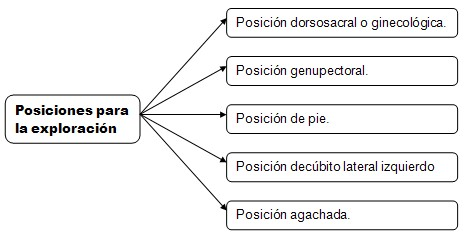 historia_clinica_digestivo/exploracion_recto_ano