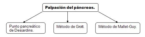 historia_clinica_digestivo/palpacion_pancreas_tecnicas