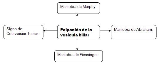 historia_clinica_digestivo/palpacion_vesicula_biliar