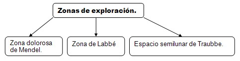 historia_clinica_digestivo/zonas_exploracion