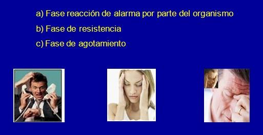 Alzheimer_estres_stress/fases_alarma_resistencia_agotamiento