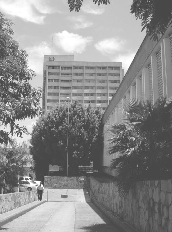 Centro_Medico_Nacional_Occidente/figura10_torre_especialidades