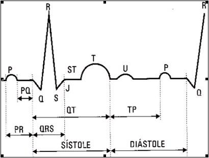 ECG_electrocardiografia_basica/grafico_intervalo_pr