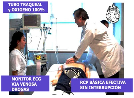 RCP_reanimacion_cardiopulmonar/tubo_traqueal_monitor