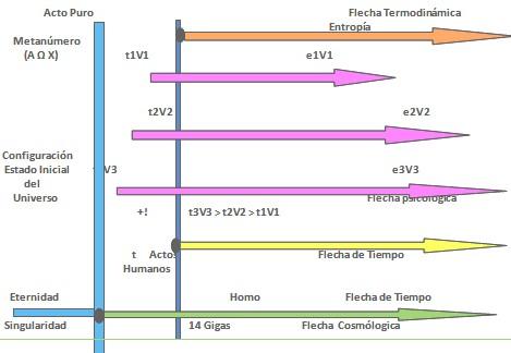 bioetica_conducta_humana/metanumero_cosmologia_universo