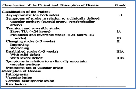 clasificacion_enfermedades_cerebrovasculares/classification_patient_description