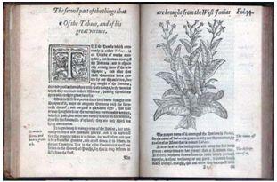 historia_enfermedades_venereas/libro_monardes