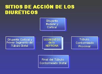 diureticos3