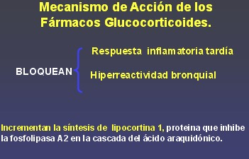 medicamentos_antiasmaticos16