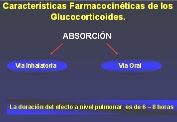 medicamentos_antiasmaticos17