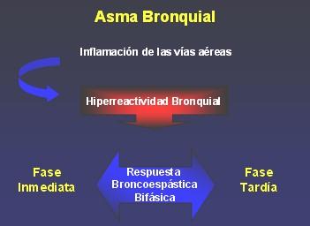 medicamentos_antiasmaticos2