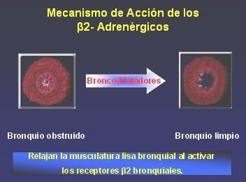 medicamentos_antiasmaticos5