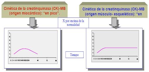 creatinfosfoquinasa cpk que es