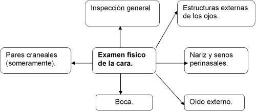 examen_fisico_cara