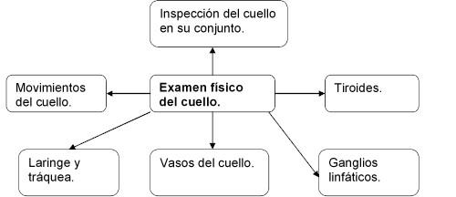 examen_fisico_cuello