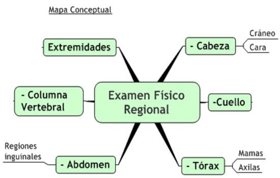 examen_fisico_regional