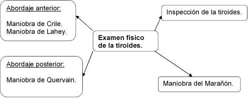 examen_fisico_tiroides