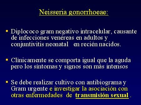 enfermedades venereas fotos. de enfermedades venereas