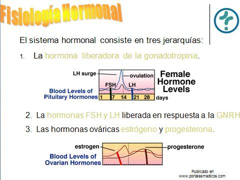 fisiologia_reproductiva/fisiologia_hormonal