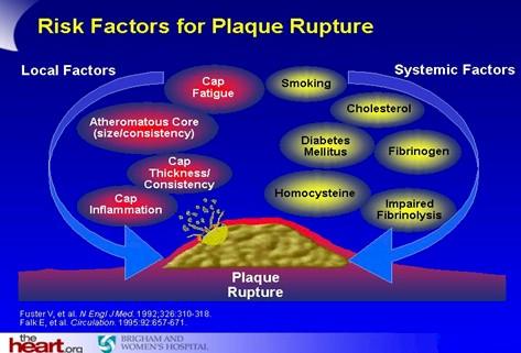 prevencion_deteccion_tratamiento_HTA/factores_riesgo_placa_ruptura