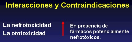 aminoglucosidos4