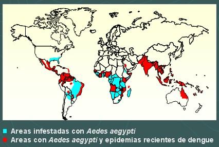 dengue_distribucion_mundial