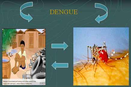 dengue_prevencion3