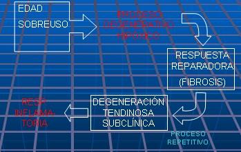 epicondilitis_fisiopatologia