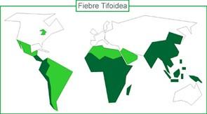 fiebre_tifoidea_mapa